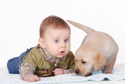Poate o femeie care nu iubeste animalele sa-si iubeasca copiii?